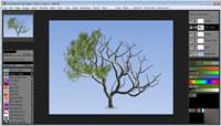 TwistedBrush Tree Studio